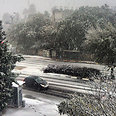 Snow in Beit Hakerem, Jerusalem Photo: Layla Azretzki