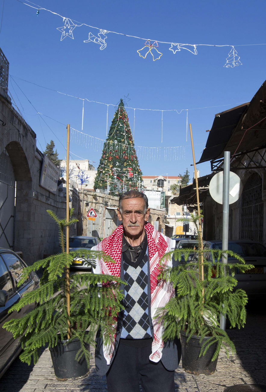 Christmas trees in Jerusalem (Photo: AFP)