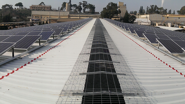 """מתקן סולארי על גג רפת בזיקים (צילום: באדיבות סולארפאוור בע""""מ)"""