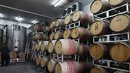 Boycotted Israeli wine Photo: Gil Yochanan