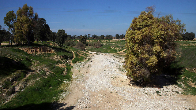 Besor Stream runs dry (Photo: Roee Idan)