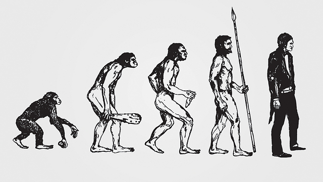 Evolution enters the curriculum (Photo: Shutterstock)