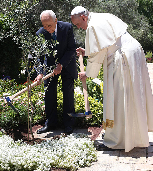 President Peres and Pope Francis plant an olive tree - a sign of peace (Photo: Amit Shabi)