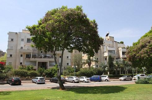 שכונת רמתיים. מרכזית בעיר (צילום: עידו ארז)
