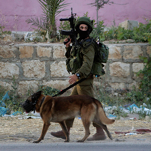 IDF troops search Nablus (Photo: AP)