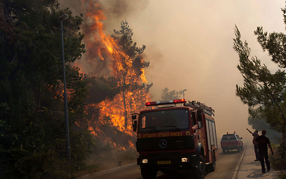 Hundreds of firefighters fought the flames (Photo: AFP) (Photo: AFP)
