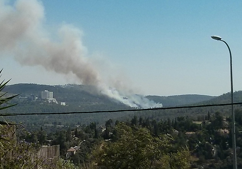 שריפה שריפות אש יער בית חולים הדסה