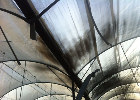 Greenhouse hit by rocket