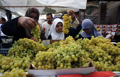 Gazans buying grapes (Archive photo: Reuters)