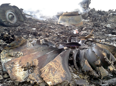 The charred remains of the plane (Photo: Reuters)