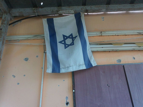 'The flag is our Iron Dome' (Photo: Silviya Orshchovsky)