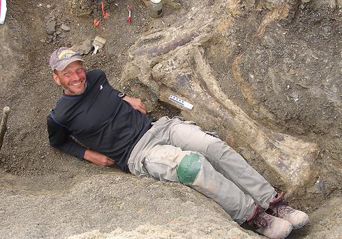 אחד החוקרים נשכב ליד שרידי עצמות הדינוזאור (צילום: AFP)