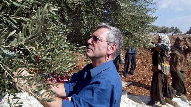 Picking olives in the West Bank in 2002 (Photo: Tzvika Tishler)