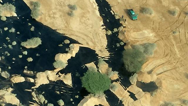 השמורה שנבצעה בשחור. עברונה (צילום: EPA)