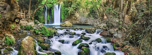 The Banias natural spring at the foot of Mount Hermon (Photo: Ittay Bodell)