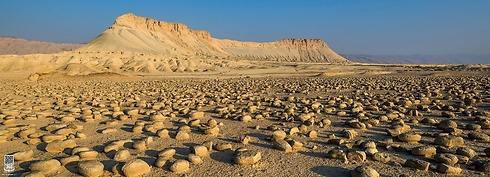 Field of potato shaped rocks at the foot of Mount Zin (Photo: Ittay Bodell)