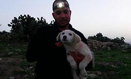 """צילום: אגודת צער בעלי חיים בישראל - ת""""א"""