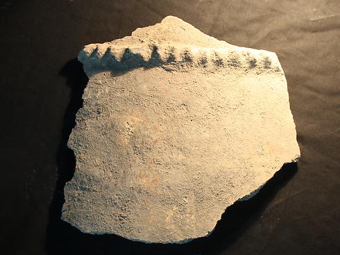 החרסים והחפירות בעין ציפורי ( צילום: באדיבות רשות העתיקות)