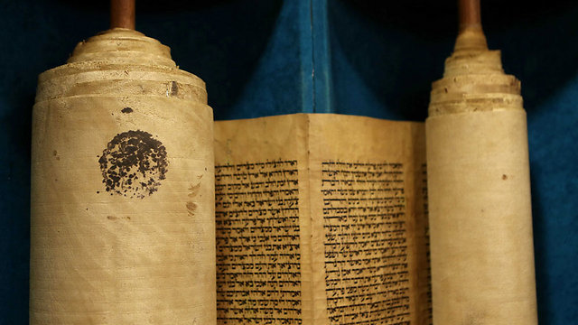 Torah scroll after restoration process (Photo: Alex Kolomoisky)