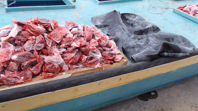 Materials found on boat. (Photo: IDF Spokesman's Unit)