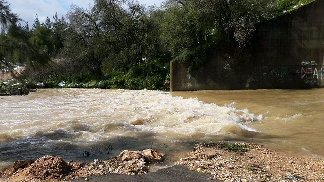 Sorek stream near Jerusalem (Photo: Roi Yanovsky)