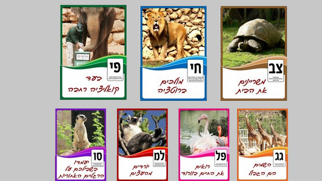 Jerusalem Biblical Zoo holds its own elections - for best animal.