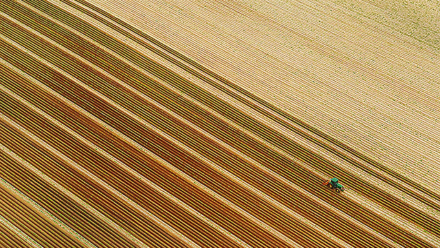 Farmer working on his field in the Galilee (Photo: Israel Bardugo)