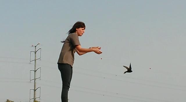 """(צילום: שמוליק לנדאו, ביה""""ח לחיות בר)"""