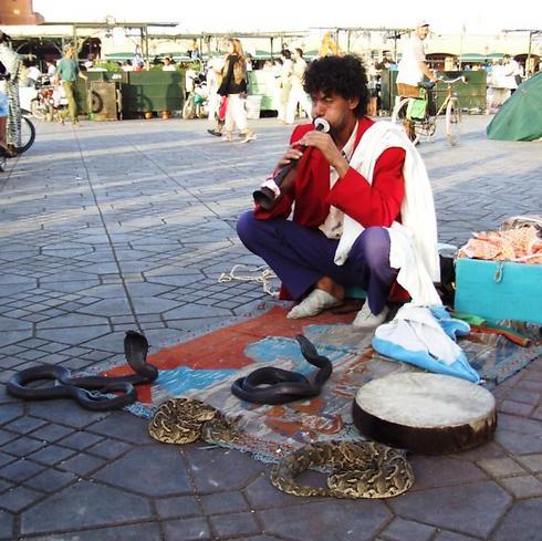 מרקיד נחשים בשוק (צילום: ויקטור מאור)