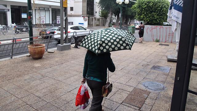 המטריות נפתחו בתל אביב (צילום: מוטי קמחי)