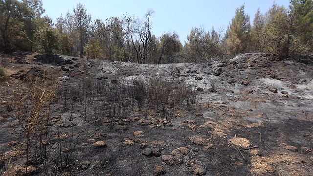 Beit Shemesh area fire leaves 1,500 dunams scorched