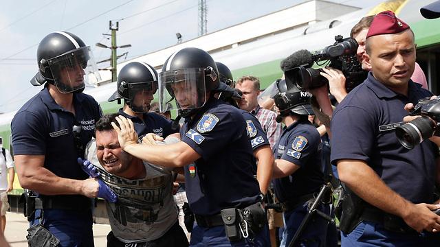 שוטרים מתעמתים עם פליטים בהונגריה (צילום: AP)