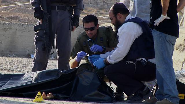 The terrorist, who was shot dead after stabbing Dikla Megidish (Photo: Eli Mendelbaum)