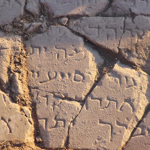 הכתובת העתיקה. צילומים: ג'ני מונרו (צילום: ג'ני מונרו)