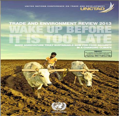 נזקי החקלאות המודרנית כוללים, בין היתר, הכחדת מינים וזיהום אוויר, מים וקרקע. האו''ם התייחס לכך במסמך שפורסם לפני כשלוש שנים וקורא לעבור בהקדם לחקלאות בת-קיימא (צילום: יער המאכל בקדרון)