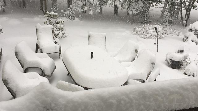ריהוט הגן בניו ג'רזי יחכה לימים יפים יותר (צילום: זאב רובינשטיין)