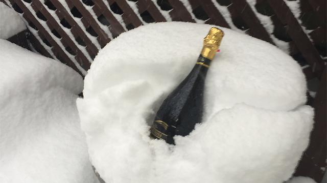 מקררים יין בניו ג'רזי  (צילום: זאב רובינשטיין)