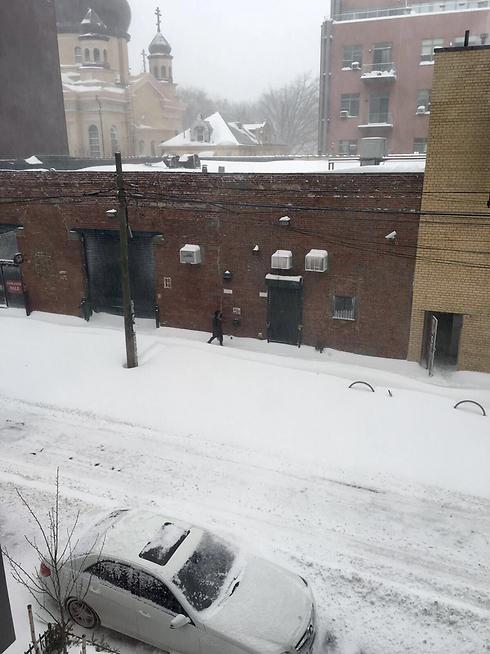 הסערה בברוקלין  (צילום: ג'ק מרטין )