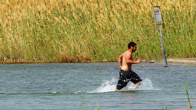 Israelis bathing in the Kinneret (Photo: Kinneret Authority)