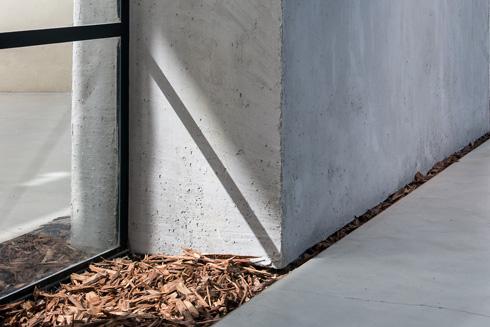 קליפות עצים מחברות בין חוץ לפנים (צילום: עמית גושר)