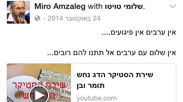 """פוסטים שפרסם """"מירו אמזלג"""" בפייסבוק ()"""