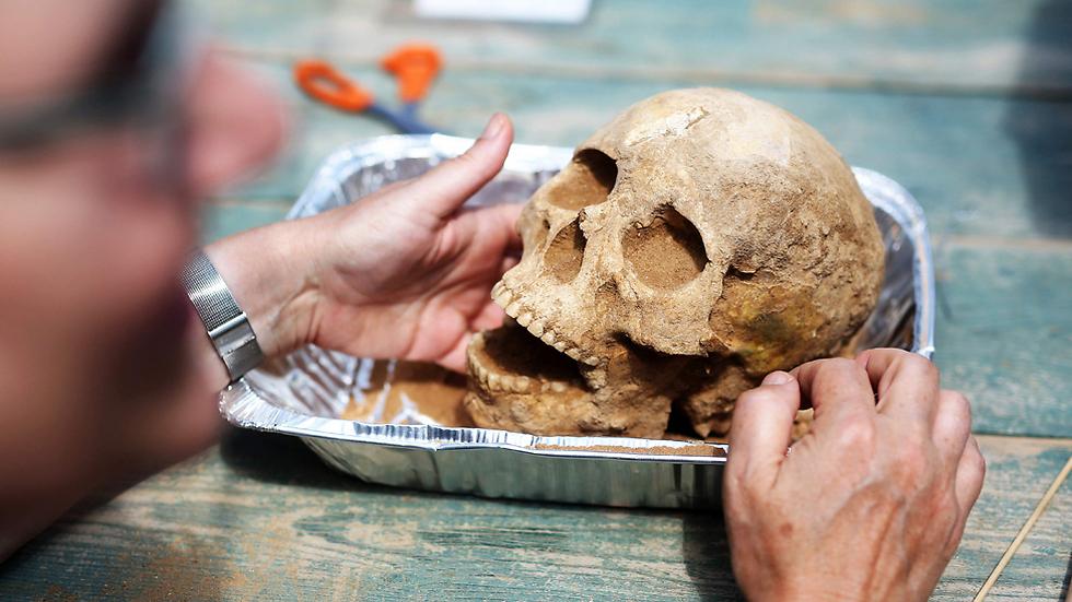 גולגולת ושלד שנמצאו בחפירות באשקלון (צילום: AFP)