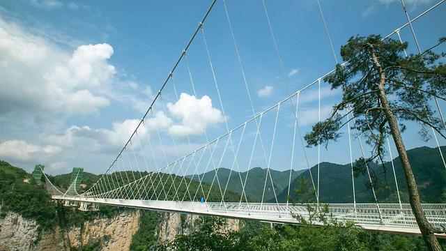 גשר הזכוכית בסין: בעיצוב האדריכל חיים דותן  (צילום: Song, Zhangjiajie Grand Canyon Company)