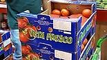 מחירי עגבניות