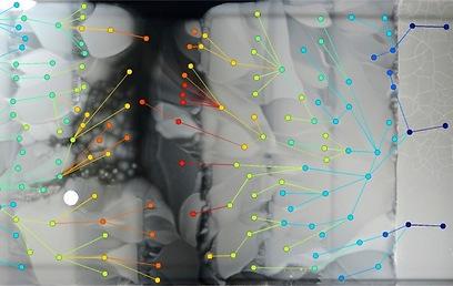 תנועת החיידקים בהתקן MEGA (צילום: דוברות הטכניון)