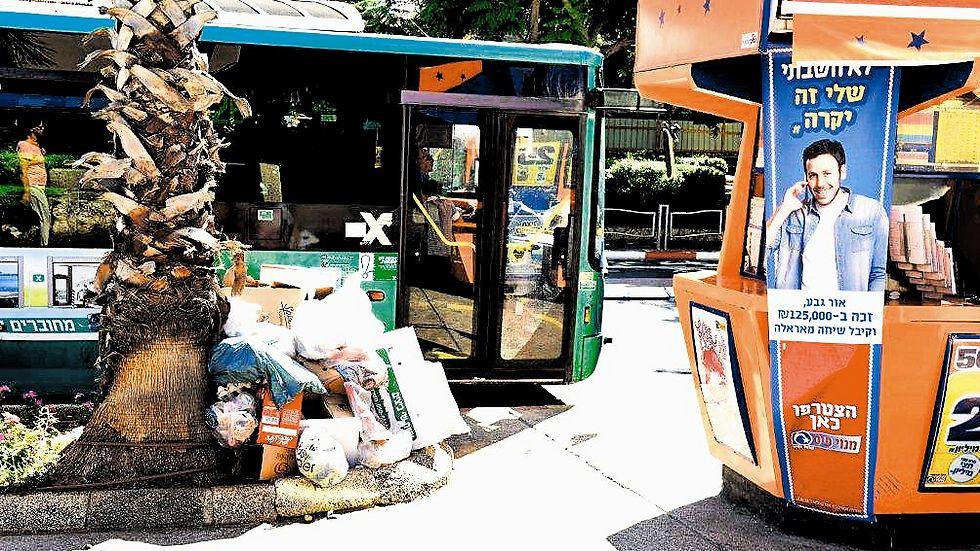 ערימות פסולת. נציג העירייה אמר שמדובר בשטח פרטי (צילום: קובי קואנקס)