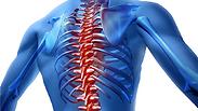 סוף לסוד: ההשפעה המפתיעה של כאבי גב