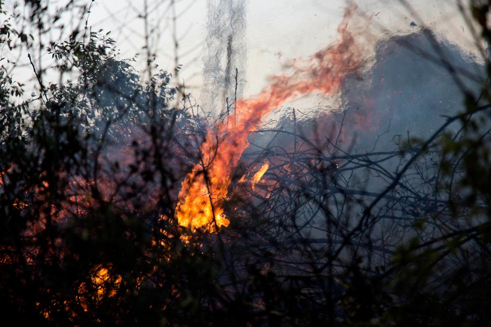 Fire rages in Zikhron Yaakov (Photo: AP)