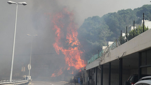 Пожар вИзраиле: вХайфе эвакуированы 50 000 человек