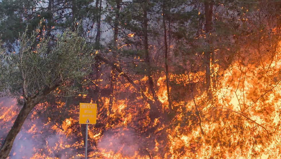 A fire rages in Haifa (Photo: AFP)